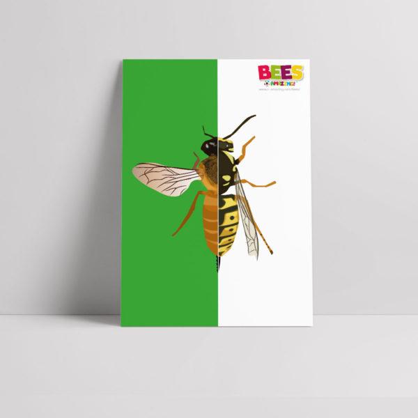 Bees vs Wasps Poster