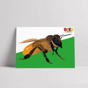 Buzzing Bee Poster