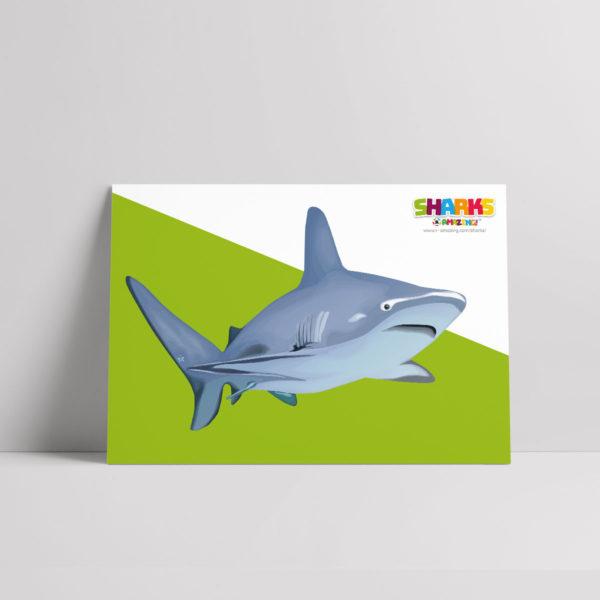 Shark Senses Poster