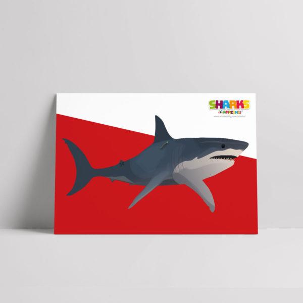 Shark Tagging Poster