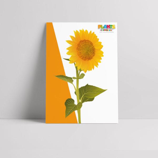 Plants R Amazing! - Awareness Poster