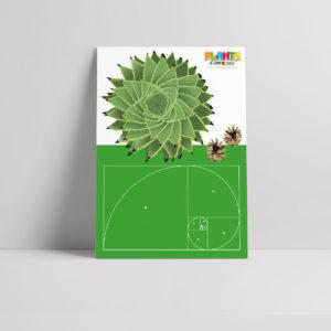 Plants R Amazing! - Golden Ratio Poster