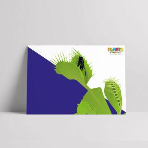 Plants R Amazing! - Venus Flytrap Poster